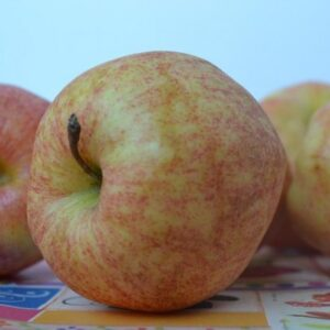 Gran's Apple Crisp!