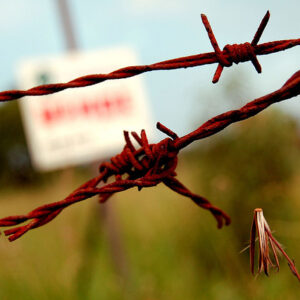 Barbed Wire Faith