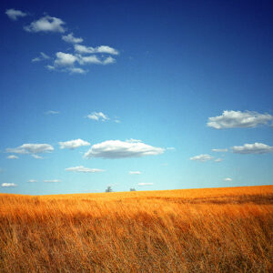 My Place On The Great Plains