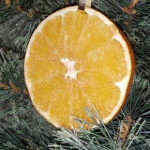 Her Christmas Pinspiration: Dried Oranges