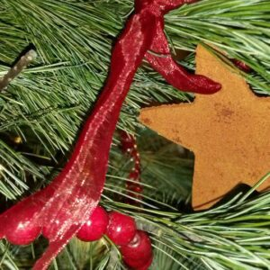 Make Memories and Ornaments: Her Pinspiration