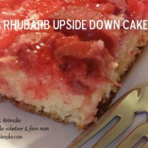 AMAZING Rhubarb Upside Down Cake