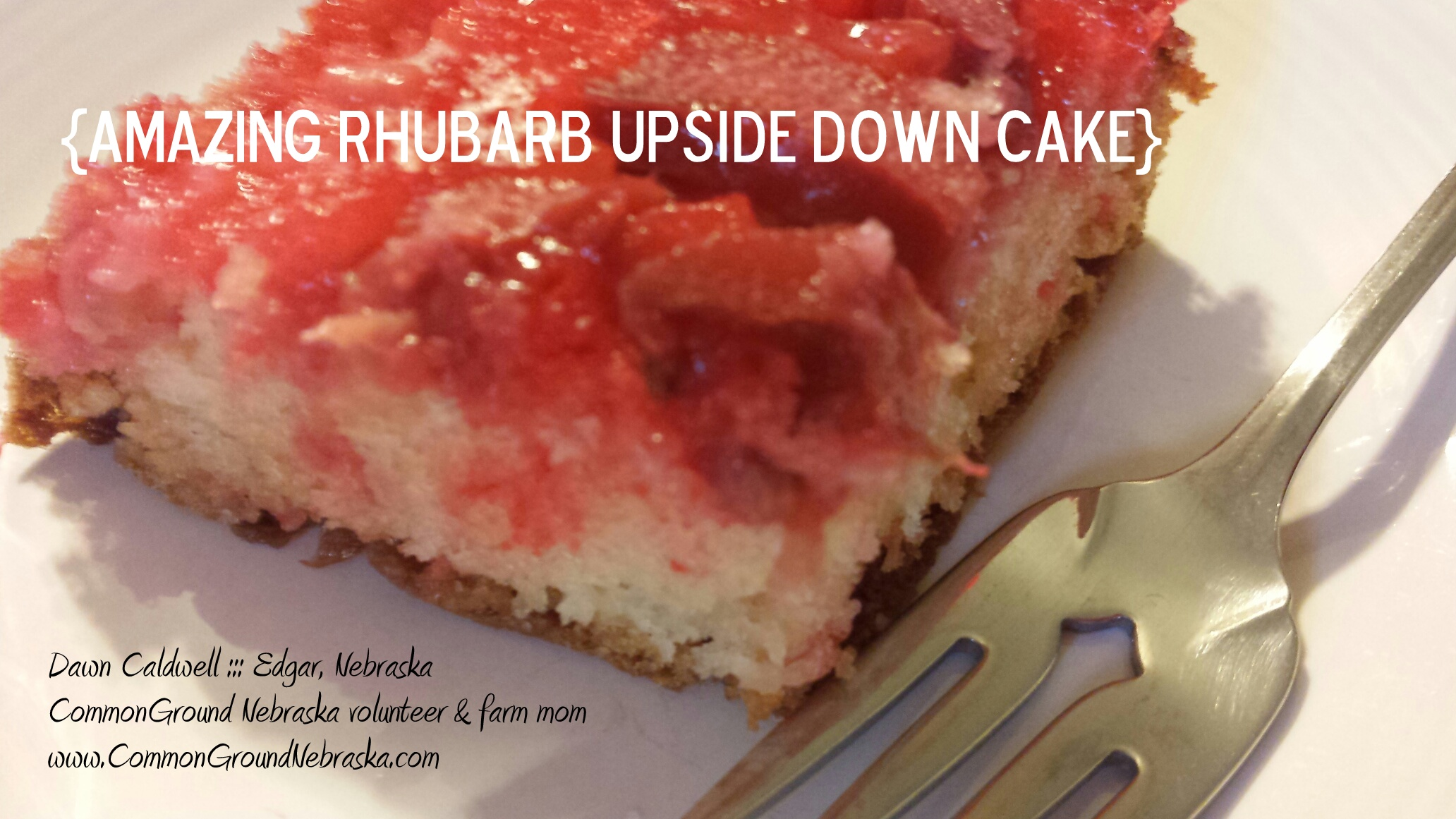 Frozen rhubarb cake recipes