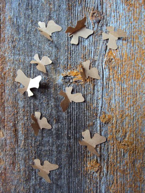 butterflies (2)