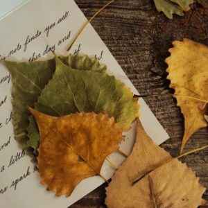 FALLING LEAVES & TICKING TIME