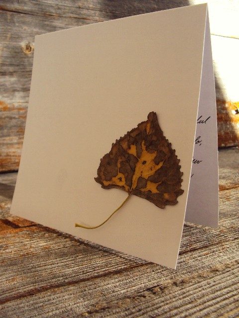 leaf notecard