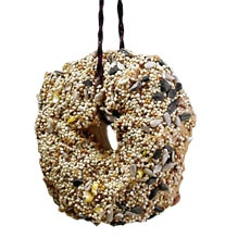 bird feeder bagel