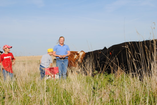 We Raise Cattle, Corn, Hogs, And Soybeans Just South Of Albion, Nebraska.  Our Cows Are Angus, And Then Are Bred To Simmental/Angus Bulls And We Feed  Out Our ...
