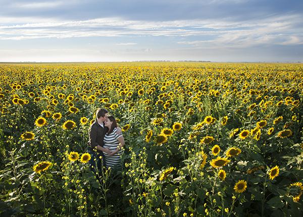 sunflower_maternity