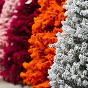 Colored Christmas Trees 101: How to Style Your Offbeat Tree