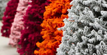 1-Colored_Christmas_Trees