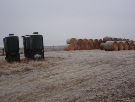 rancher(2) (1)