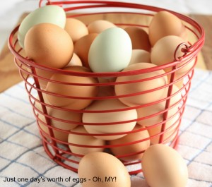 Egg basket barnwood