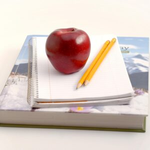 What a Year of Homeschooling Has Taught Me