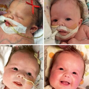 Please Help Baby LoLo