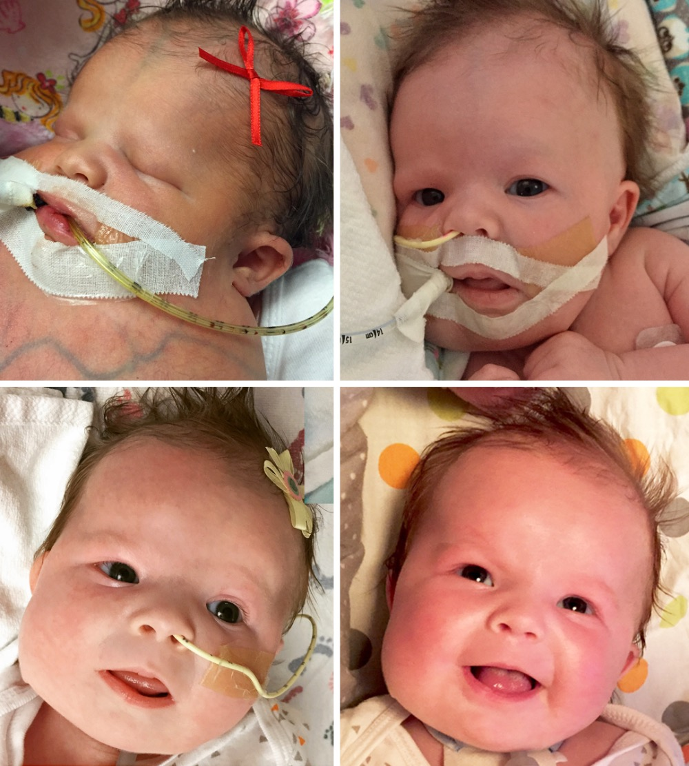 Please Help Baby LoLo www.herviewfromhome.com