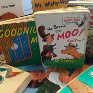 """Goodnight moon….Goodnight books."""