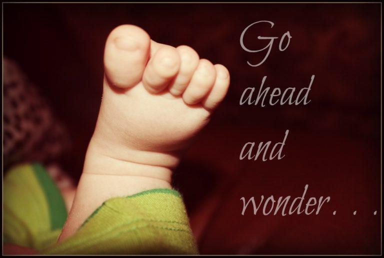 You Will Always Wonder www.herviewfromhome.com
