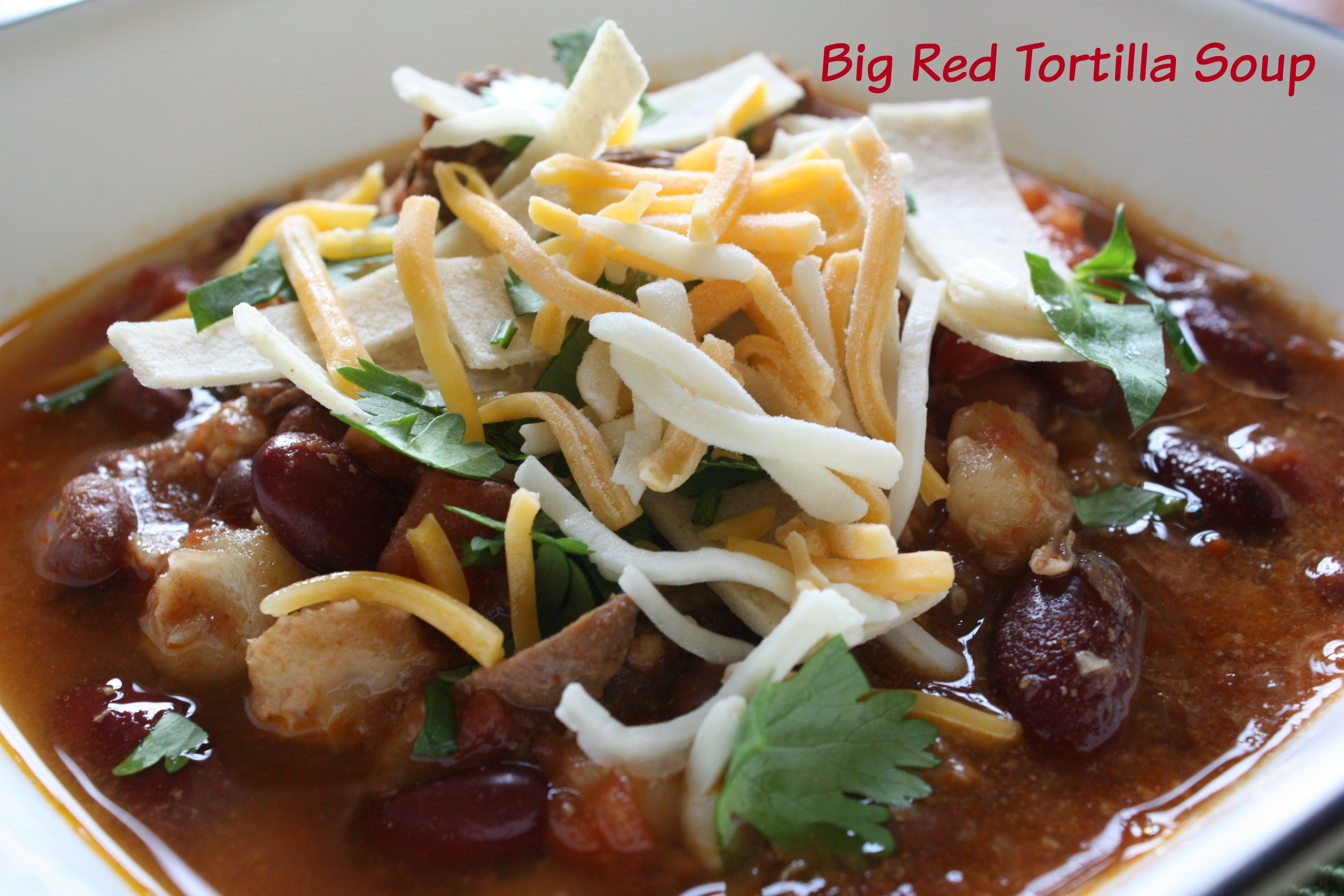 Big Red Tortilla Soup www.herviewfromhome.com