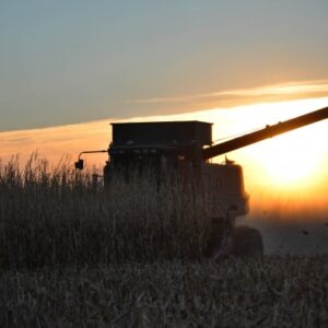 Making It Through Harvest: 5 Ways to Stay Connected with Your Farmer