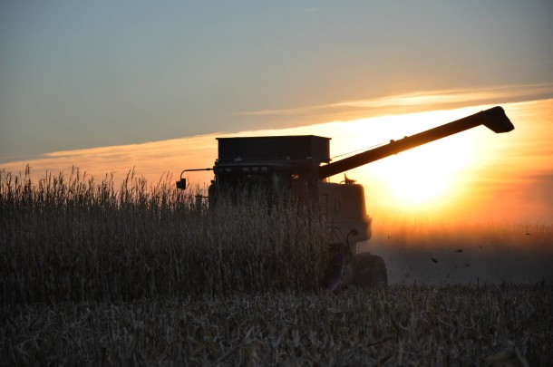 Making It Through Harvest: 5 Ways to Stay Connected with Your Farmer www.herviewfromhome.com