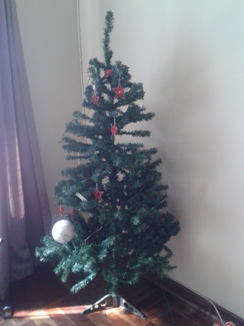 The Year Without a Christmas Tree www.herviewfromhome.com