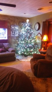 9 Family Christmas Traditions to Make Your Own   www.herviewfromhome.com