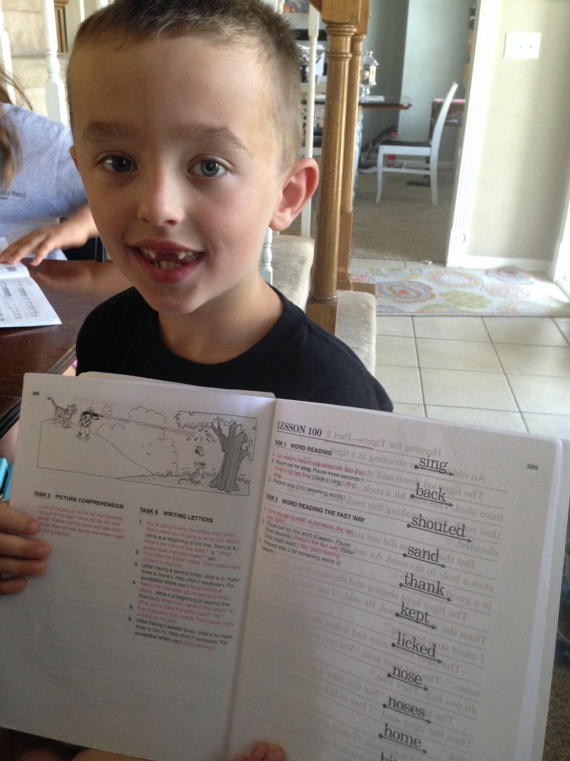 why in the world do we homeschool?