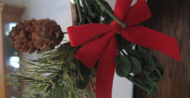 The Magic of Mistletoe? www.herviewfromhome.com