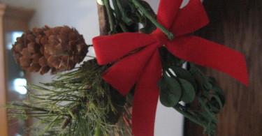 The Magic of Mistletoe? www.herviewfromhome.com