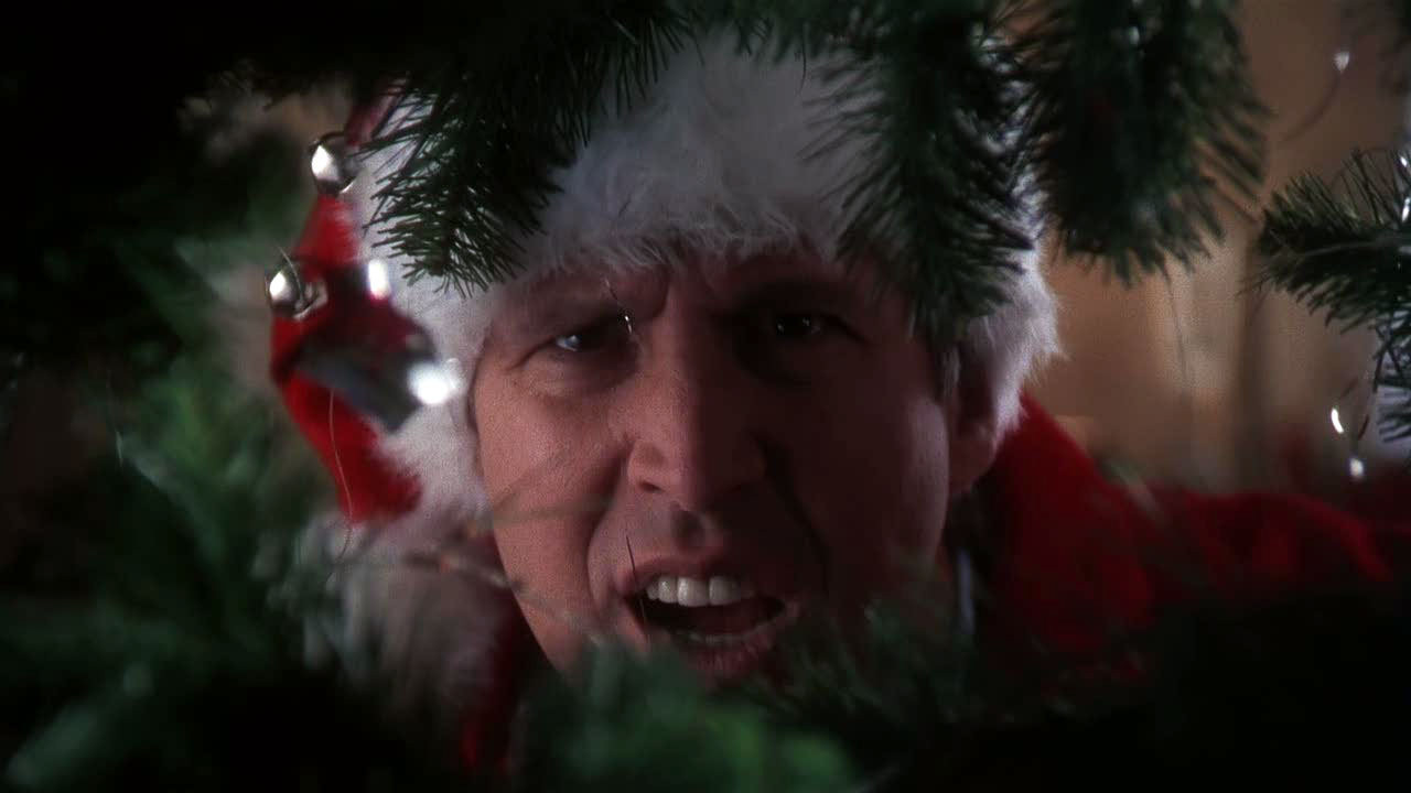 "11 One-Liners in ""National Lampoon's Christmas Vacation"" That Will Snap You Back to Reality www.herviewfromhome.com"