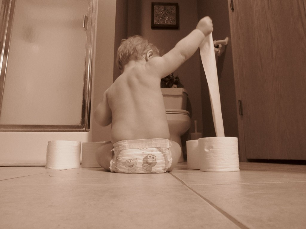 Babies are like Toilet Paper   www.herviewfromhome.com