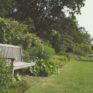 Uncle Steve's Last Garden