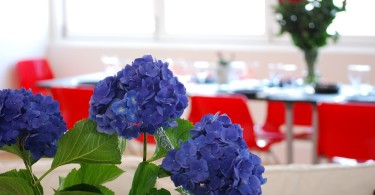 Planning a Retirement Party on a Budget www.herviewfromhome.com