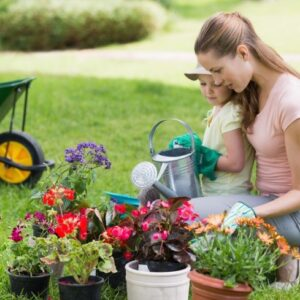5 Benefits of a Small, Healthy, Homegrown Garden