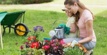 5 Benefits of a Small, Healthy, Homegrown Garden www.herviewfromhome.com