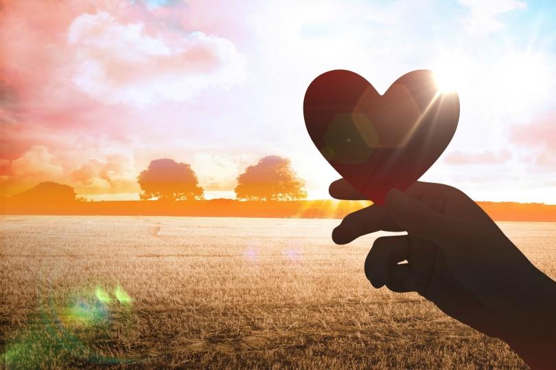 My Sweetheart is a Farmer www.herviewfromhome.com