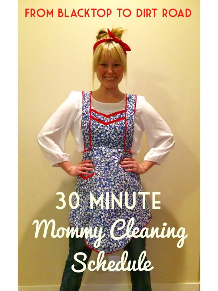 Say Goodbye to Spring Cleaning - The 30 Minute Mommy Cleaning Schedule www.herviewfromhome.com