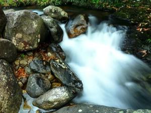 The Photo I Never Took   www.herviewfromhome.com