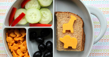 The New Parenting Fail - Our Kids' Packed School Lunches www.herviewfromhome.com