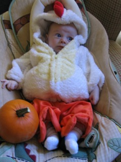 One Mom's Halloween Crisis: I Just Want My Baby Chicken   www.herviewfromhome.com