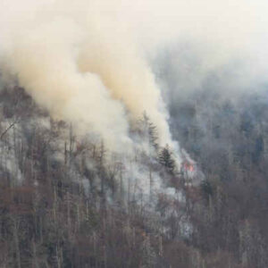 To Our Friends At Great Smoky Mountains National Park:  We Are Praying For You