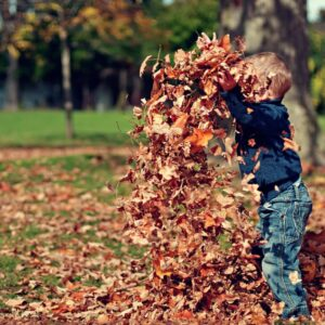 Here's Why You Should Let Your Kids Jump In Leaf Piles