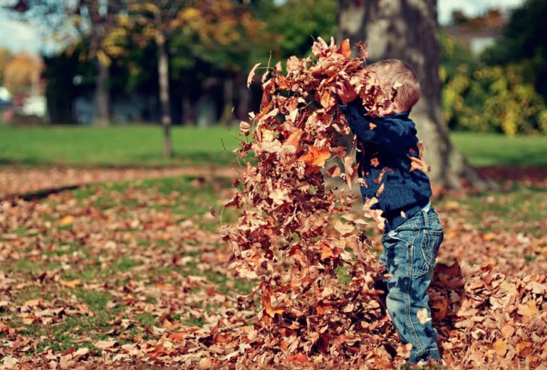 Here's Why You Should Let Your Kids Jump In Leaf Piles www.herviewfromhome.com