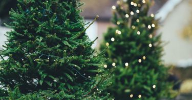 10 Sanity Saving Ways to Survive Christmas www.herviewfromhome.com