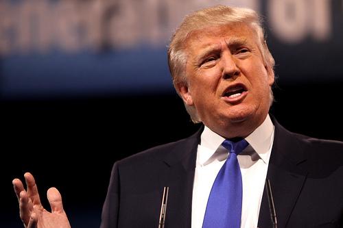 Dear Mr. Trump - Please Do Better www.herviewfromhome.com