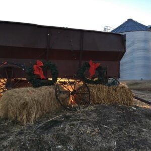 To the Farm Mama Who is Worried This Christmas