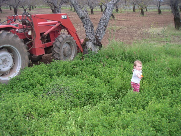 The Magic of Ag www.herviewfromhome.com
