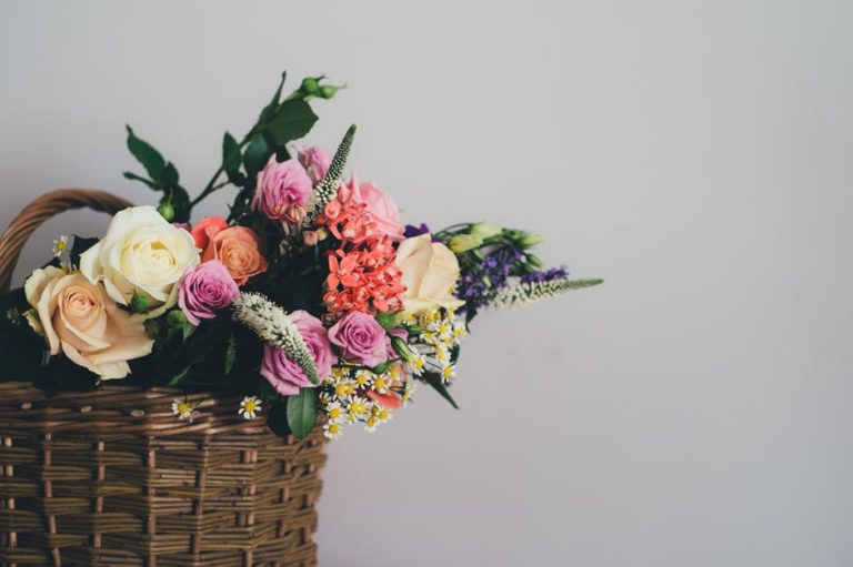 I Won't Celebrate Mother's Day www.herviewfromhome.com