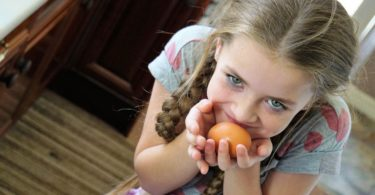 How To Stop The Evening Meal Food Battle With Your Kids! www.herviewfromhome.com